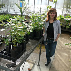 Botany professor Rachel Spicer poses with plants inside Connecticut College's newly renovated greenhouse.