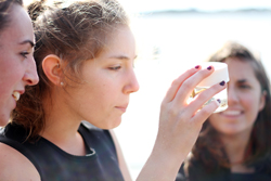 Students collect invertebrate samples in Niantic Bay Estuary. Photos by Laura Cianciolo '16.